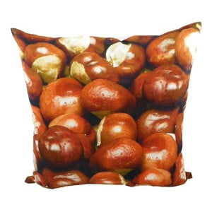Polštář Wood Chesnuts 50x50 cm