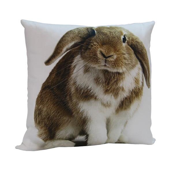 Polštář Rabbit Frank, 45x45 cm