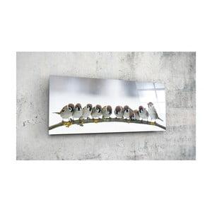 Skleněný obraz Insigne Fernoso, 92x36cm