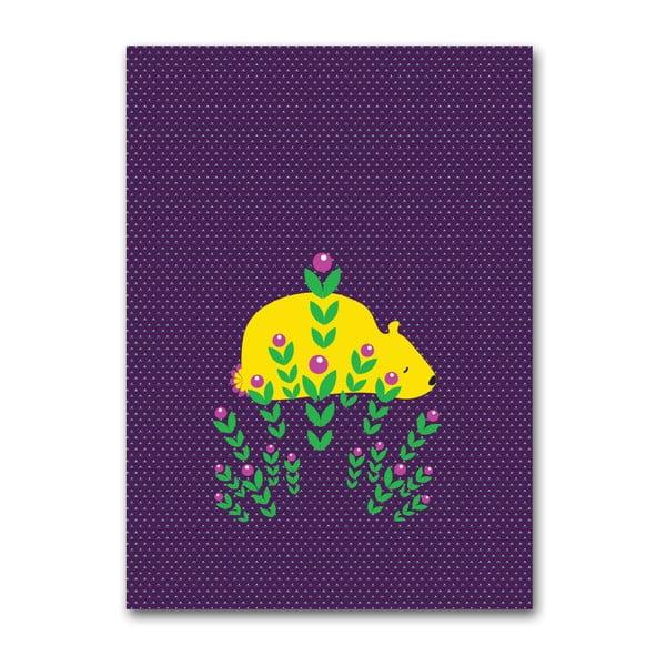 Plakát Medvěd, velký