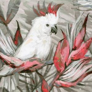 Obraz na plátně Marmont Hill Kakadu, 61 x 61 cm