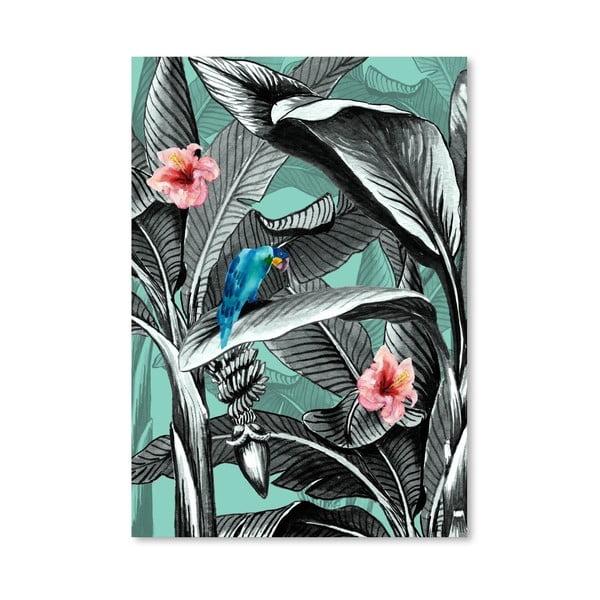 Plakát Tropical 9