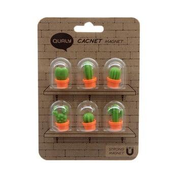Set 6 magneți Qualy&CO Cacnet de la Qualy