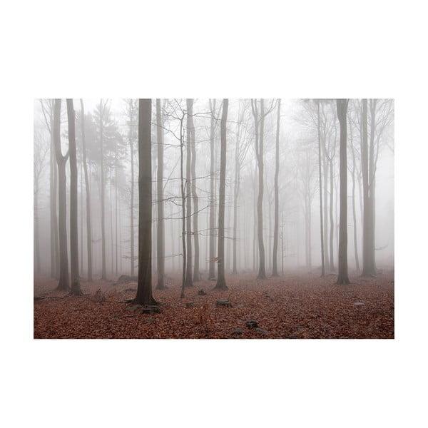 Autorská fotografie Petra Hricka - Podzimní, vel. A1