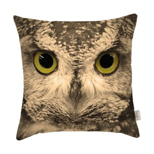Povlak na polštář Apolena Owl
