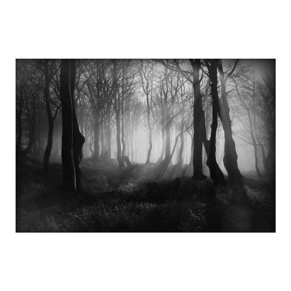 Fotografie Mlhavá, limitovaná edice fotografa Petra Hricka, formát A1