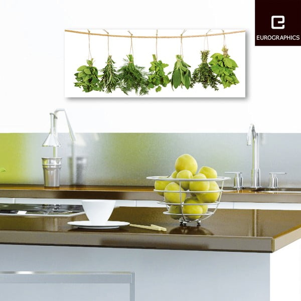 Skleněný obraz Hanging Herbs, 30x80 cm