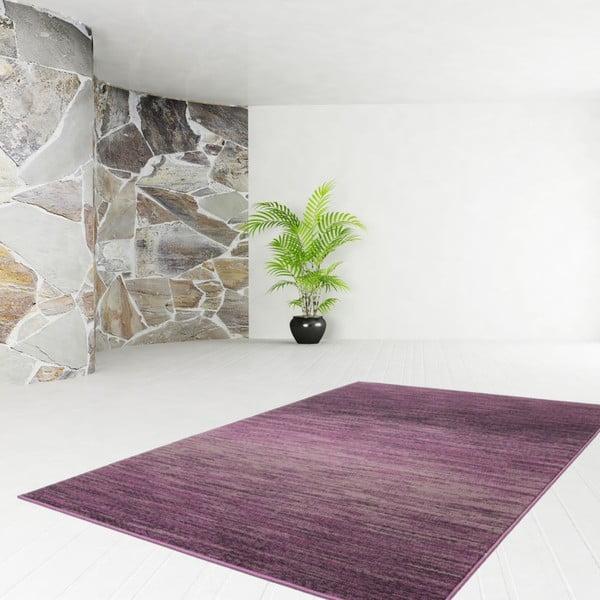 Koberec Funky 1933 Purple, 160x230 cm