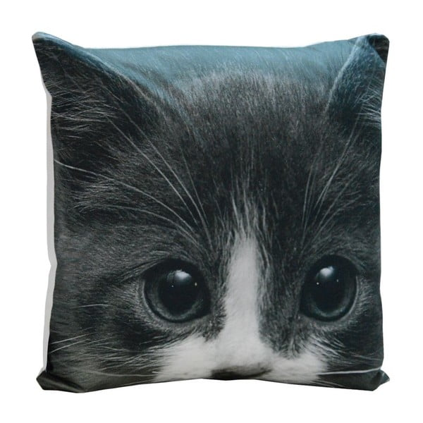 Polštář Black Kitty, 45x45 cm