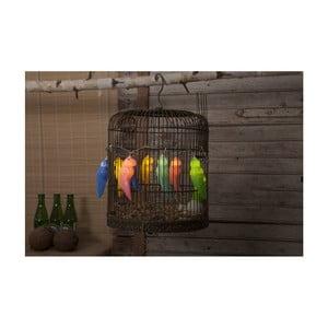 Decoraţiune luminoasă LED Best Season Lightchain Funlight Parrots, 10 becuri