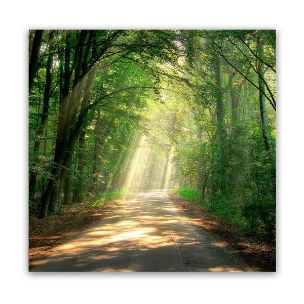 Glas Nature Road kép, 30 x 30 cm - Styler