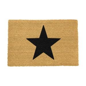 Rohožka Artsy Doormats Star,90x60cm