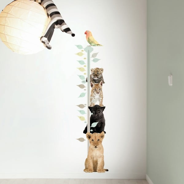 Samolepka Metr se školkou kočkovitých šelem