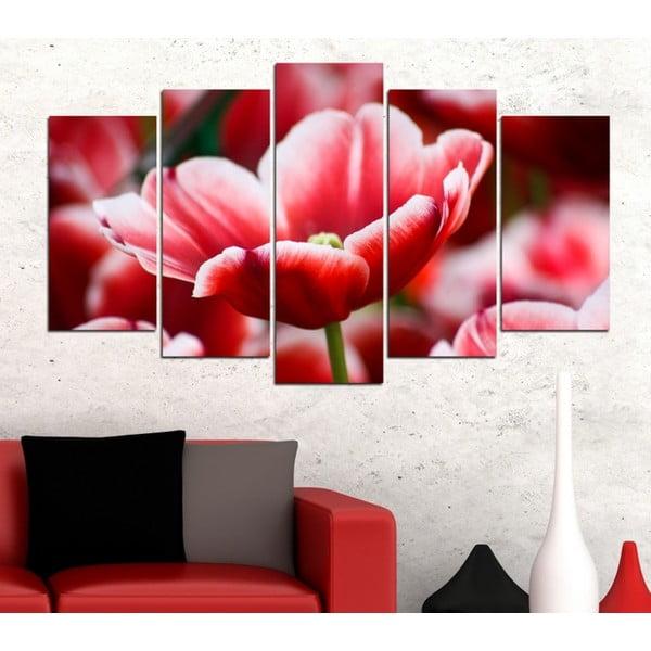 5dílný obraz Tulipán