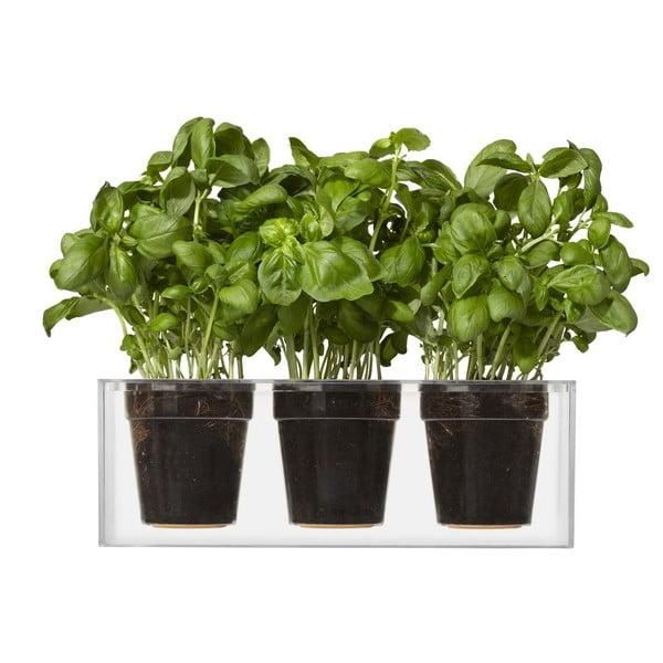Trojice samozavlažovacích květináčů Cube, malé