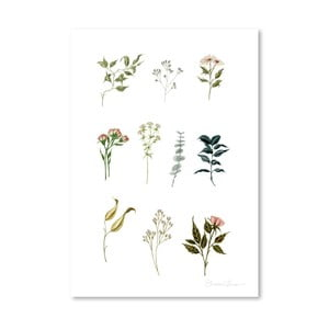 Poster Americanflat Delicate Botanica Lpieces by Shealeen Louise, 30 x 42 cm