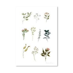 Plakát Americanflat Delicate Botanica Lpieces by Shealeen Louise, 30 x 42 cm