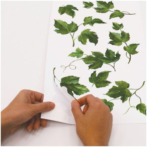 Samolepka na zeď Evergreen Ivy