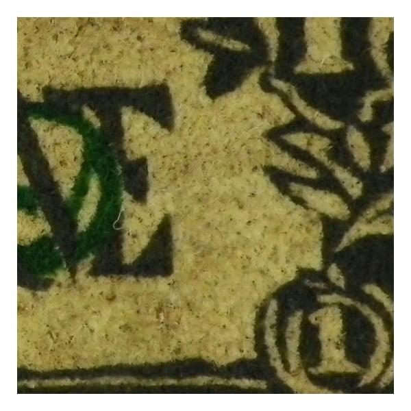 Rohožka Dollar, 75x25 cm