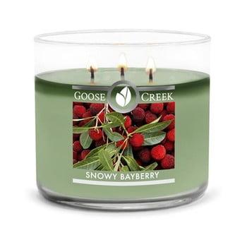 Lumânare parfumată în recipient de sticlă Goose Creek Snowy Bayberry, 35 ore de ardere imagine