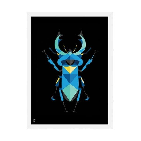 Plakát Stag Beetle Black, 50x70 cm