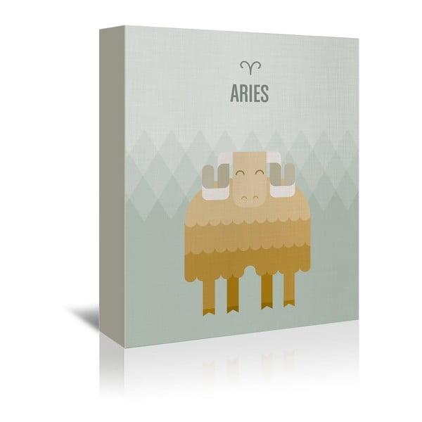 Obraz na plátně Aries od Christiana Jacksona