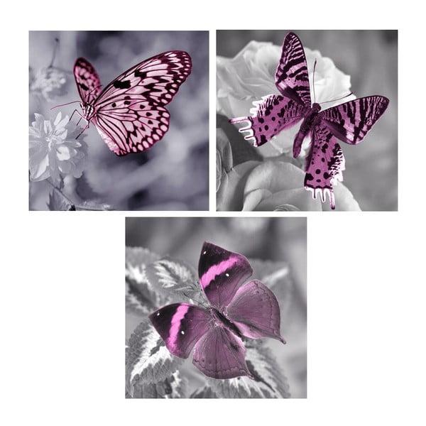 Set obrazů na skle Motýlí, 20x20 cm, 3 ks
