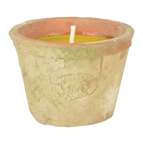 Świeczka z dodatkiem citronelli Ego Dekor, 10 h