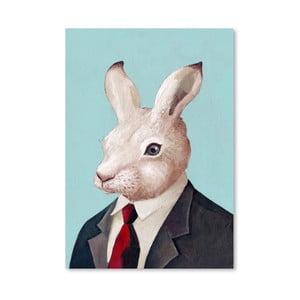 Plakát Rabbit, 30x42 cm