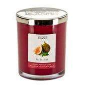 Aroma svíčka s vůní fíků a bylinek Copenhagen Candles, doba hoření 40 hodin