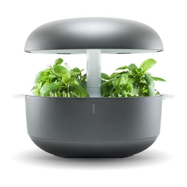 Szary inteligentny ogródek domowy Plantui 6 Smart Garden Grey