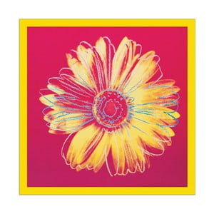 Andy Warhol - Daisy C 1982