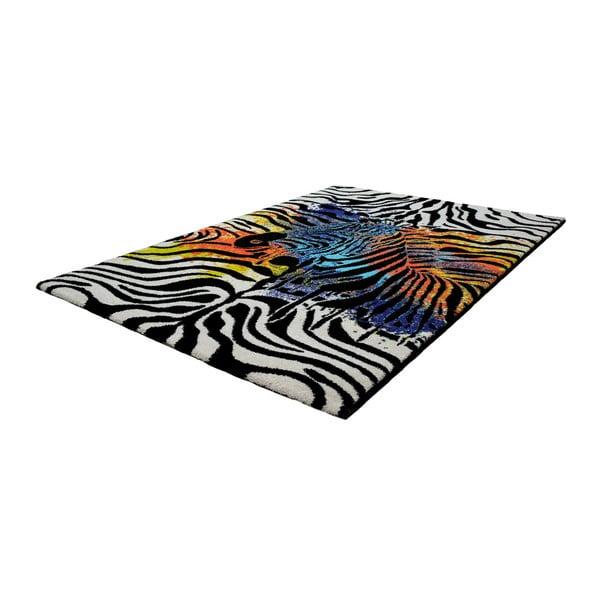 Koberec Obsession My Miami Safari, 80 x 150 cm