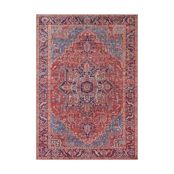Czerwony dywan Nouristan Amata, 80x150 cm