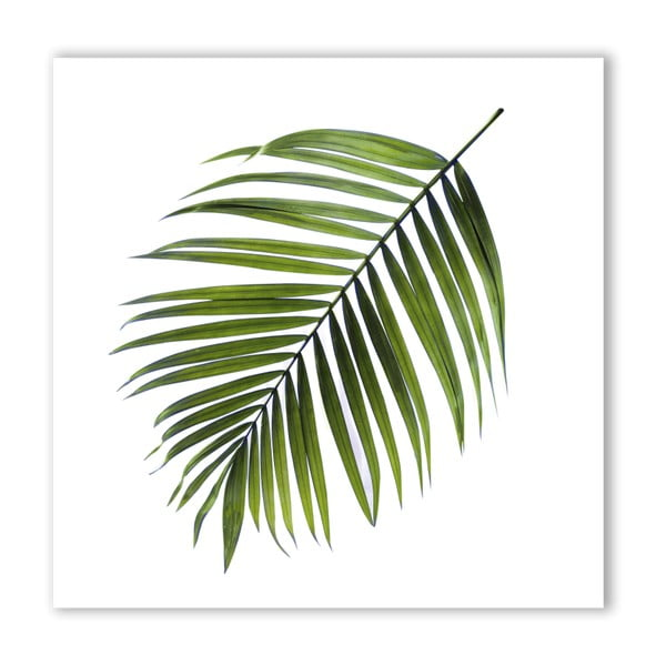 Obraz Styler Canvas Greenery Black Palm, 32 × 32 cm
