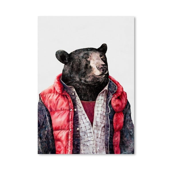 Plakát Black Bear, 42x60 cm
