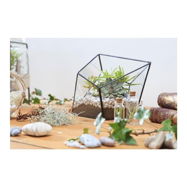 Terárium s rostlinami Diamond Urban Botanist, tmavý rám