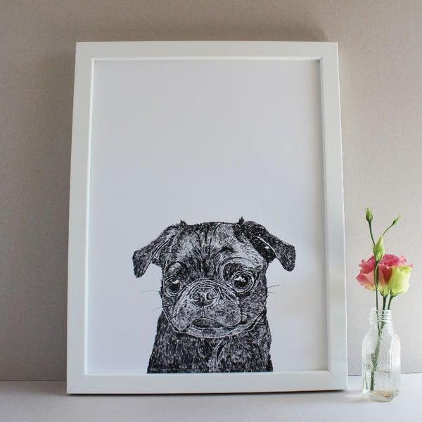 Plakát Olive the Black Pug, 30x40 cm