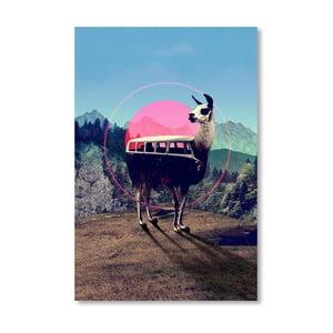 Autorský plakát Llama