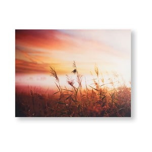 Obraz Graham & Brown Morning Sunrise Meadow, 80 x 60 cm