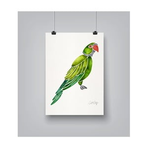 Poster Americanflat Parrot, 30 x 42 cm