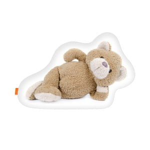 Polštář Teddy, 40x30 cm
