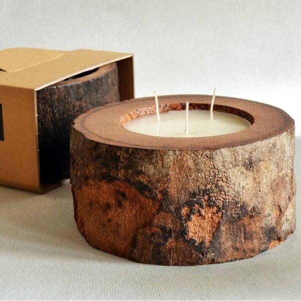 Palmová svíčka Legno Palm s vůní vanilky a pačuli, 100 hodin hoření