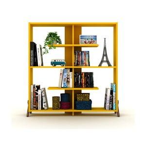 Žlutá knihovna Rafevi Kipp