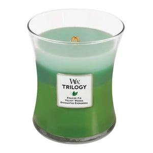 Lumânare parfumată WoodWick Trilogy, aromă de lemn de brad și citrice, 60 ore