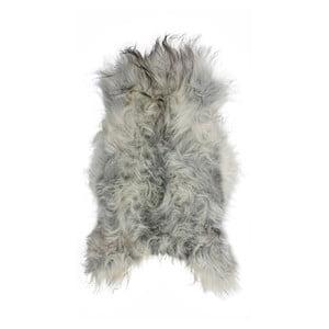 Světle šedá ovčí kožešina s dlouhým chlupem Arctic Fur Chesto, 90x50cm