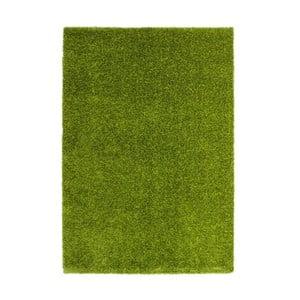 Koberec Harmonie 910 green, 160x230 cm
