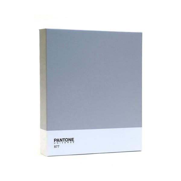 Obraz Pantone 877 Classic Silver