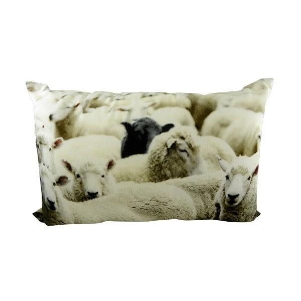 Polštář Sheep Black 60x40 cm