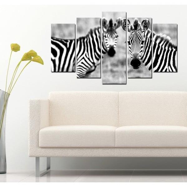 5dílný obraz Zebry